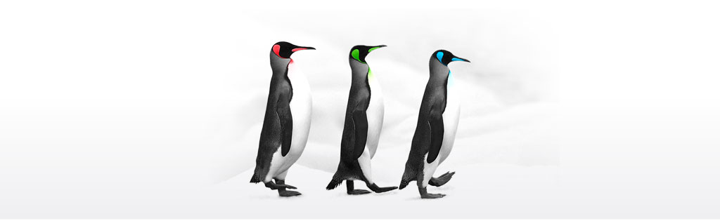headerdef-pinguin.jpg